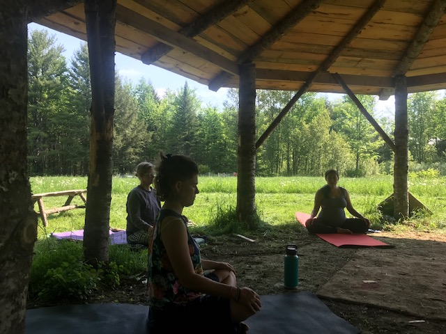 Yoga in the Pavilion – July 15, Aug 12